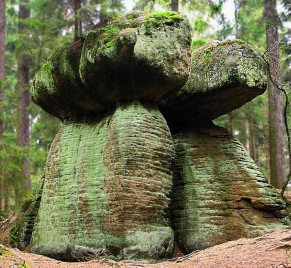 Skalne grzyby (1)-Góry Stołowe